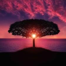 Jak się zatrzymać w Tu i Teraz, czyli gdzie się podziewa twój spokój i szczęście?