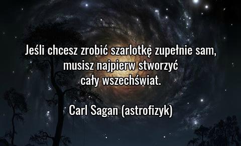 2016-08-saganquote